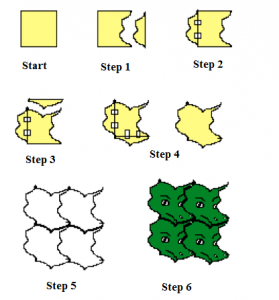 2 Step Cutting Tessellation